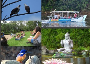Rainforest Boat Cruise and Crystal Castle Package