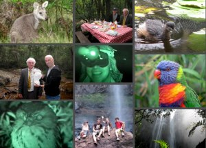 Yowie Tour and Night Vision Package