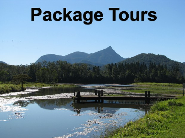 Package tour specials