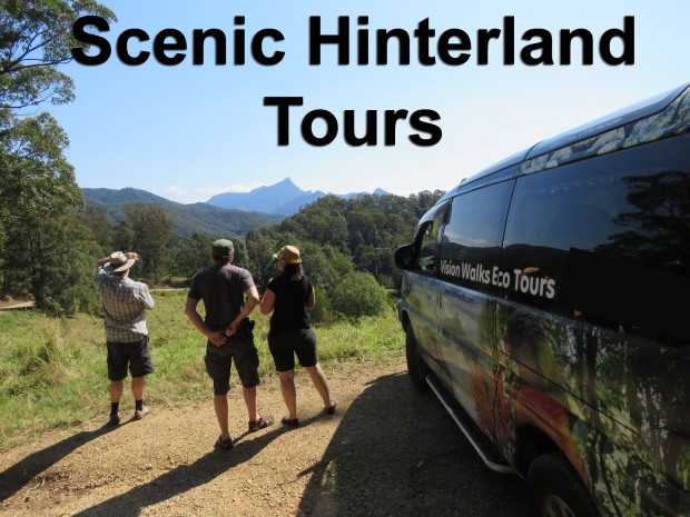 Scenic Hinterland and Cultural Tours