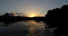 Sunset Eco Rainforest River Cruise