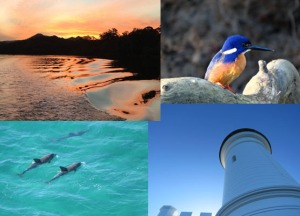Byron Bay and Sunset River Cruise Package